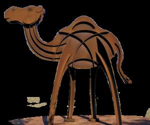 Camel_Arthur