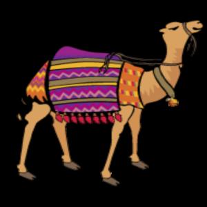 http://campverdegeneralstore.net/wp-content/uploads/2017/01/cropped-CVGS-camel-tab.png