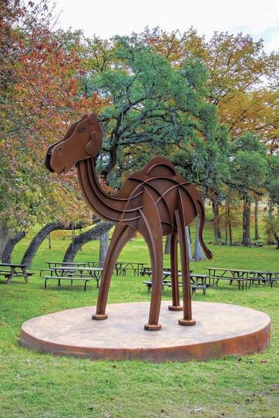 steel-camel2